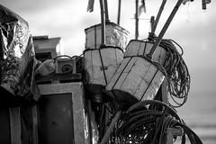 PTO. LA PALOMA | 160403-4239-jikatu (jikatu) Tags: 135mm apo bote boya buoy cabopolonio cuerda d810 fishermanboat jikatu nikon pescador rocha rope ultratrail uruguay zeiss