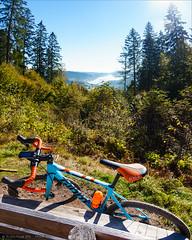 Bench with a view (Torsten Frank) Tags: crossrad cyclocross deutschland fahrrad giant hochschwarzwald mittelgebirge radfahren radsport schluchsee schwarzwald tcxadvancedpro1 votecgravelfondo badenwrttemberg cycling bike bicycle crossbike sdschwarzwald