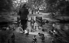 Sharing with my friends (Anne Worner) Tags: woman anneworner em5 fyllingsdalen lensbaby mother norway son sweet35 aves bend bendy birds blur bridge candid child ducks female following mallard outdoors path street streetphotography trees walking waterfowl woods texture layers silverefex