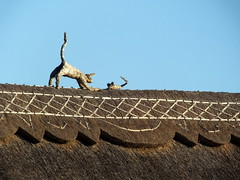 On my way to work.... details of new thatch... cat and mouse are part of the design of the thatch... each thatcher has his/her style statements... (Sue - happy sparrow) Tags: thatch thatching thatchedcottage cottage poxwell dorset roof cat mouse catandmouse winter sunshine