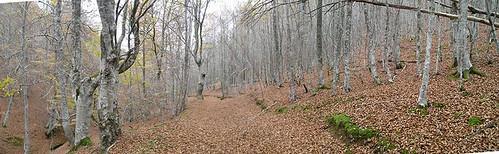 Alto De La Fonfría Desde Santurdejo Ezcaray - Logroño - Fotografía Javi Cille (13)