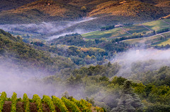 Morning Mist at Sunrise (Erik Pronske) Tags: agriculture morning tuscany panzanoinchianti fog chianti sunrise mist country italy villa hills trees wine valley greveinchianti toscana it
