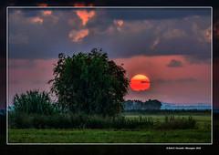Alba a la marjal d'Algemes (Dawn at Algemes's marsh) 38 La Ribera Alta, Valncia, Spain (Rafel Ferrandis) Tags: alba algemes marjal ef100400mmf4556lii eos7dmkii nwn