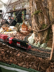 HTS-25 (Peter Parides) Tags: unitedstates christmas trains newyorkbotanicalgardens newyork new york city