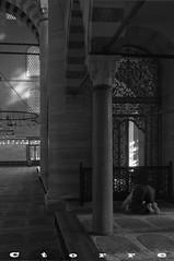 4326 B Mezquita de Suleymaniye (carlostorrebenito) Tags: bn celosia columna estambul fotografiadecalle gente lampara mezquita musulman reja templo v ventana vidriera bw latticework column istanbul streetphotography people lamp mosque muslim grid temple window stainedglasswindow