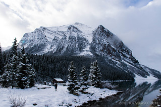 Nature and snow in Lake Louise. Alberta, Canada.