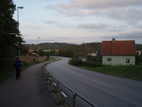 Torsbyvägen, Ytterby, 2008 (2)