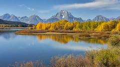 Oxbow Fall Reflection (LG G4) (Jeffrey Sullivan) Tags: grand teton national park fall colors reflection aspen grandtetonnationalpark lg g4 mobile phone camera images smartphone cellphone california usa photo copyright 2015 jeff sullivan september road trip