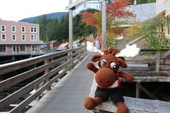 IMG_3694 (The Crochet Crowd) Tags: crochetmoose amigurumi moose crochet doll alaska britishcolumbia thecrochetcrowd michaelsellick jeannesteinhilber danielzondervan crochetcruise mooseontheloose