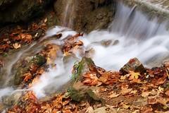 #autumn #waterfalls #nature_photography (salam.jana) Tags: autumn waterfalls naturephotography