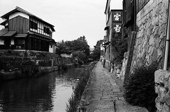 Along the Canal 2 (Purple Field) Tags: street leica bw film monochrome japan analog 35mm walking canal alley kodak iso400 trix rangefinder 400tx  40mm m3  hachiman shiga omi  minilux f24 summarit              x