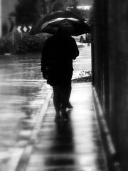 Walking, walking... (smallfox2) Tags: people blackandwhite water monochrome rain shadows umbrellas newtown paultodd smallfox