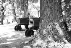 Couple O' Olivers (David Sebben) Tags: trees ir illinois oak shadows oliver farm machinery valley shade coal tractors
