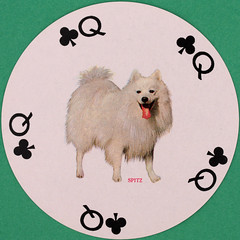Famous Dogs of the World Round Playing Card Queen of Clubs (Leo Reynolds) Tags: playing canon eos iso100 deck card squaredcircle 60mm f80 playingcard carddeck 40d hpexif 001sec 066ev xleol30x sqset093 xxvisiblexx