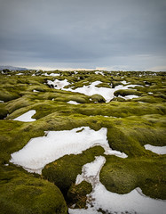Lava Fields, South Iceland (Jonny Fay) Tags: road winter vacation sky snow mountains green grass landscape lava 1 march iceland moss nikon scenery rocks soft view ring vik route vista handheld fields 24mm f4 route1 120mm d800 ringroad kirkjubjarklaustur 24120 2013 36mp nikond800 36megapixels 24120mmf4 36megapixel