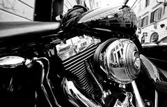 Harley Davidson (BW) (Edwin van Tilburg, I Follow back (but no porn!) re) Tags: blackandwhite bw italy rome bike zwartwit sony sigma harley motorbike harleydavidson motorcycle zwart zw edwinvantilburg