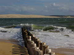 Alignement, Cap-Ferret, Bassin d'Arcachon, Gironde, Aquitaine, France. (byb64) Tags: sea mer france mar ferret sand frankreich europa europe day cloudy 33 dune sable eu arena vagues francia passes bassin algues pyla bassindarcachon capferret pilat aquitaine gironde aquitania dune