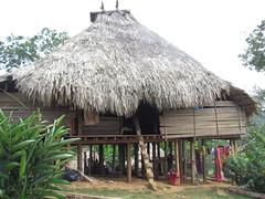 Poblado Ember - Parque Nacional Chagres (twiga_swala) Tags: park rio village pueblo group national panama np tribe ethnic embera panamanian tribu amerindian poblado choc chagres amerindio