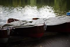 (HHH shots) Tags: canon munich boat garten 6d englischer