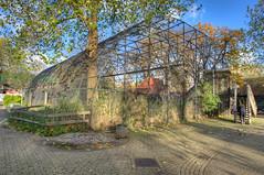 2013-11-09-09h44m23.272P9995_6_7 (A.J. Haverkamp) Tags: amsterdam zoo thenetherlands hdr artis dierentuin lepelaar platalealeucorodia commonspoonbill canonef1740mmf4lusmlens httpwwwartisnl