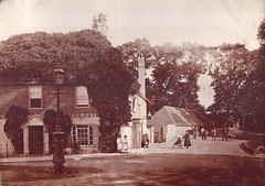 E00768 Terminus Hotel (East Sussex Libraries Historical Photos) Tags: pub victorian eastbourne eastsussex thesquirrel 1870 publichouse 1870s mayqueen groveroad terminushotel terminusroad hartfieldfarmhouse gilbertarms sterndalebennett