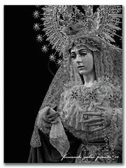 Esperanza Macarena (nazareno de cola) Tags: lunessanto semanasantadealmera nuestraseoradelaesperanzamacarena antoniojoaqundubdeluque cofradadelamacarena