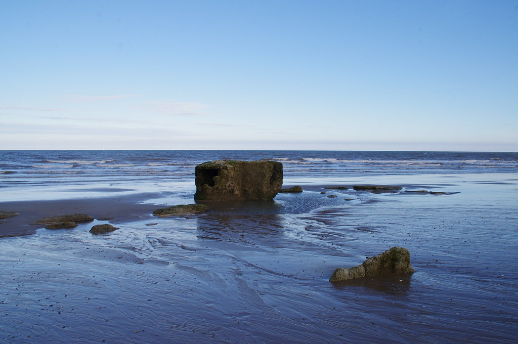 Is There A Dog Friendly Beach At Hornsea