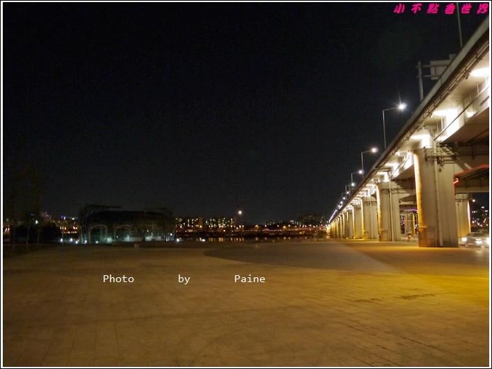 10.11 盤浦大橋 (9).JPG