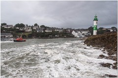 Dolan tempte 1er janvier (Dominique Saunier) Tags: bretagne vague vagues phare tempte dolan snsm