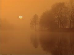 misty morning (hans 1960) Tags: trees winter sun mist sol nature misty fog sunrise soleil smog pond nebel hiver natur landschaft sonne reflexion bume sonnenaufgang spiegelung mirrow weiher spiegell