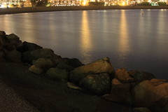 Jetty At Night (kmurray180) Tags: beach bay long jetty pike the