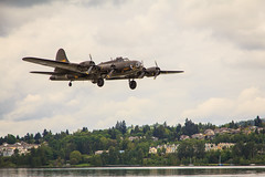 B-17 Memphis Belle on approach to Renton Field after another successful mission (David Hollenback) Tags: b17 renton