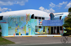 The Rose Boutique - Ruskin, FL (Mike Woodfin) Tags: color photography photo interesting colorful pretty florida picture photograph dome fl unusual geodesic ruskin futuristic streamline mikewoodfin theroseboutique marymarthahouse