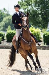IMGP1159 (mikemcnary) Tags: park horse sport jump jumping ride kentucky air jumper hunter rider equestrian equine kentuckyhorsepark