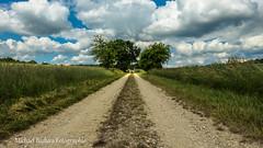 20140615-P1050715 (micha-63) Tags: landscape bayern lumix feld mittelfranken fz150 micha63