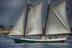 Schooner--Harbor (PAJ880) Tags: schoner liberty clipper boston harbor sails masts