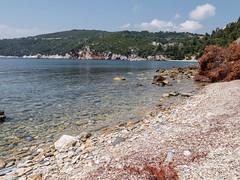 Skopelos May 2015 (Roger Hanuk) Tags: beach boat greece kodakektar sailingboat sea seascapes skopelos stafylos xequals yacht sporades thessaliastereaellada