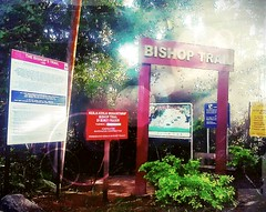 https://foursquare.com/v/frasers-hill/4c15e15ea5eb76b0f8fbc3b7 #outdoor #holiday  #travel #trip #green #hill #Asia #Malaysia #pahang #fraserhill #bukitfraser # # # # # # # # # # # (soonlung81) Tags: outdoor holiday travel trip green hill asia malaysia pahang fraserhill bukitfraser
