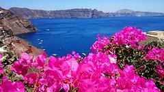 Another Great Day at #Santorini ...  (bookingsantorini) Tags: santorini greece travel holiday hotel villa bookingsantorini greekisland cyclades vacation santorinihotels trip traveller aegean mediterranean travelgreece greek