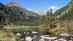 Malga Nudole (Adamello Presanella Alps) (ab.130722jvkz) Tags: italy trentino alps easternalps rhaetianalps adamellopresanellaalps mountains rivers