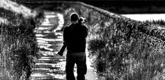 The Path Home (Missy Jussy) Tags: rupert dog man trevorkerr puppy spaniel springerspaniel englishspringer lancashire footpath reservoir light walls walkways photographer canon cannon600d canon70200mm blackwhite bw blackandwhite littledoglaughednoiret