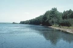 Queen Elizabeth PP (Alberta Parks) Tags: lake water alberta canada queenelizabeth provincialpark reflection trees landscape shore waves bay