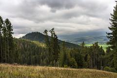 Hiking (Miroslava Balazova LAZAROVA) Tags: forest nature landscape beauty slovakia janska dolina