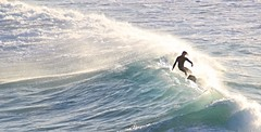 Sat on the hill and watched the surfers at South Beach (Celeste33) Tags: wollongong australia surfer ocean water beach waves