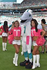 Miami Dolphins Cheerleaders (jackson1245) Tags: mdc miamidolphinscheerleaders miami dolphinscheerleaders dolphins nflcheerleaders