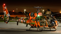 Aerospatiale SA-342M Gazelle Arme de Terre 3862 (DrAnthony88) Tags: arme de terre arospatiale sa342m gazelle nikkor af 80400mm f4556 ed vr d nikon d810 prop blur raf northolt tiger scheme