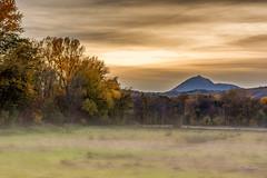 Douceur Champtre (cleostan) Tags: automne 2016 auvergne puydedome france brume brouillard sunset vert arbres tree champ ciel nuages cloud nikon d7100 ngc