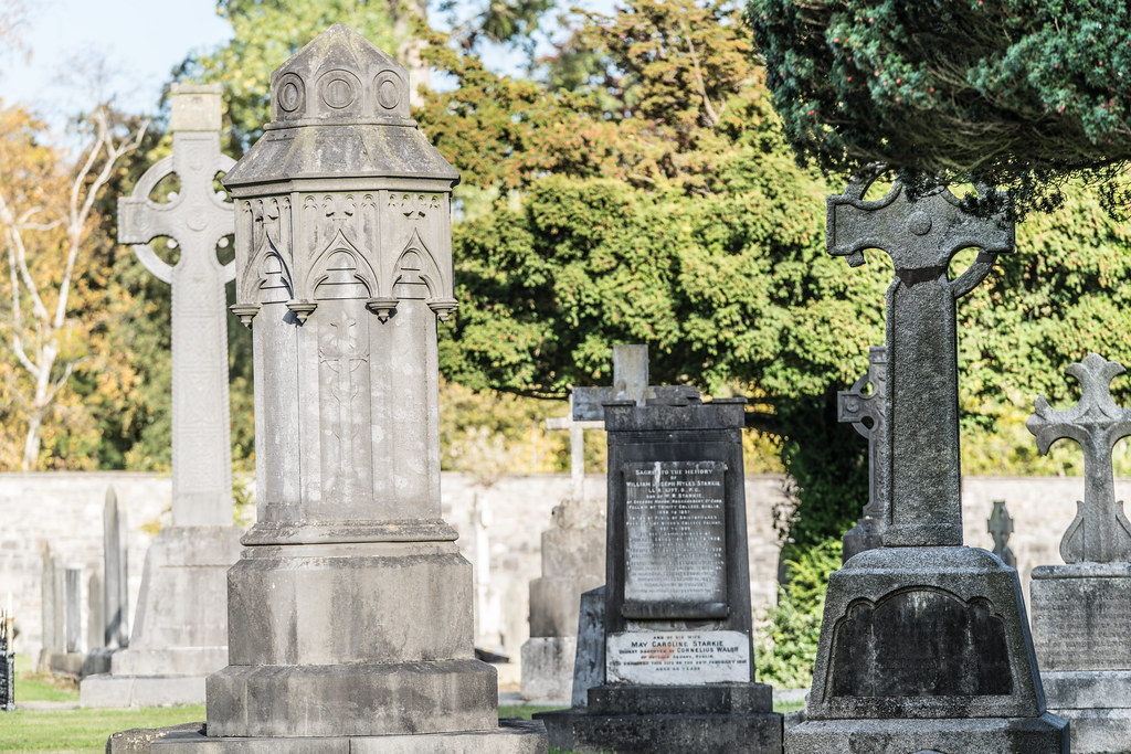 A QUICK VISIT TO GLASNEVIN CEMETERY[SONY F2.8 70-200 GM LENS]-122109