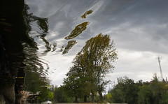 Dragged by the Flow (andressolo) Tags: reflection reflect reflected ferrol reflejos reflejo ripples reflections ripple river ro water trees car flow distorted distortion distortions clouds electric