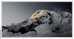 Sunrise on the Annapurna South from Australian Base Camp (L'Abominable Homme de Rires) Tags: nepal atalante tamron 2470mmf28 canon 5dmkiii landscape trek himalaya annapurna noiretblanc nb blackwhite